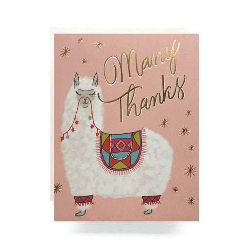 Antiquaria - Alpaca Thanks Greeting Card / EQUATION Boutique