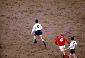 Jimmy Greaves - White Hart Lane Pitch - 1966