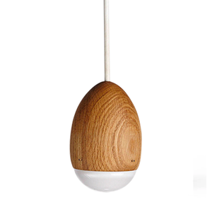 Load image into Gallery viewer, Egglight Pendant Lamp