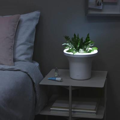 Ora Planter With Led Light