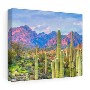 Wall Decor Midwest Desert Canvas Wrap