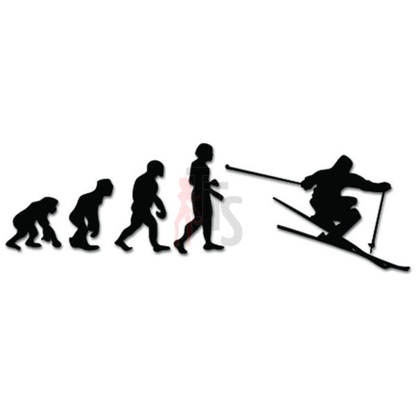 Evolution of Alpine Skiing Ape Human Sport Decal Sticker