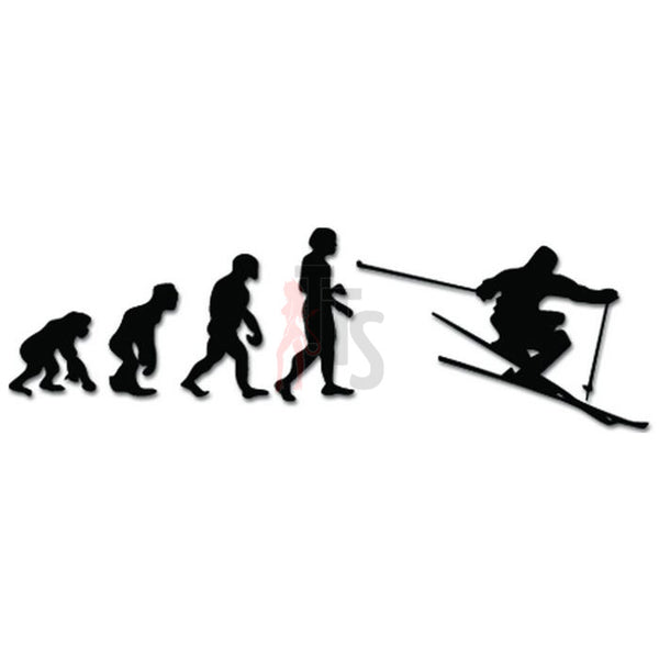Evolution of Skiing Ape Human Sport Decal Sticker