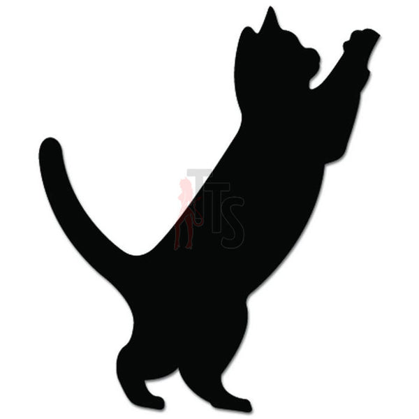 Cat Playing Pet Owner Decal Sticker
