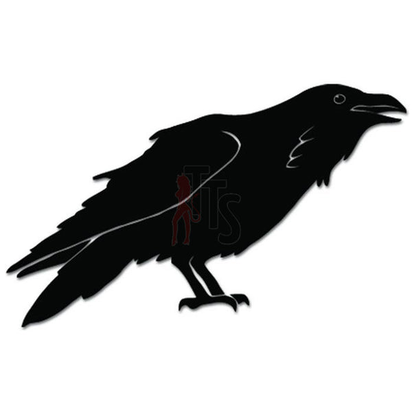 Raven Crow Bird Decal Sticker