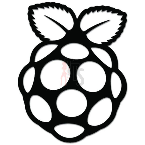 Raspberry Pi Computer Programming Decal Sticker