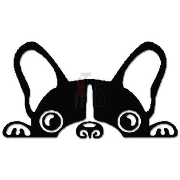 Boston Terrier Pet Dog Peeking Decal Sticker