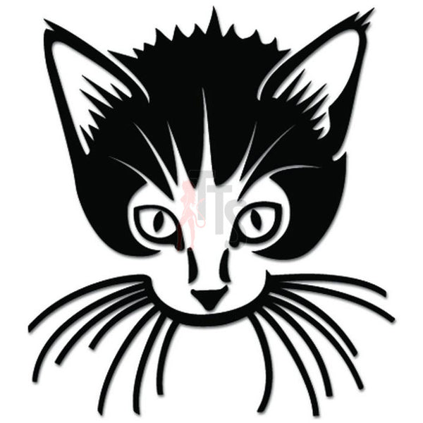 Cat Kitten Pet Decal Sticker