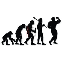 Bodybuiding Muscle Evolution Decal Sticker