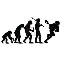 Men Lacrosse Sports Evolution Decal Sticker