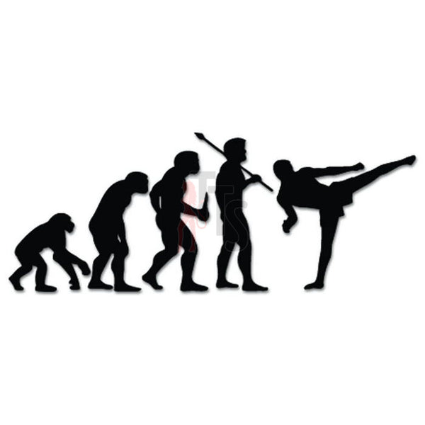 MMA Fighter Sports Evolution Decal Sticker