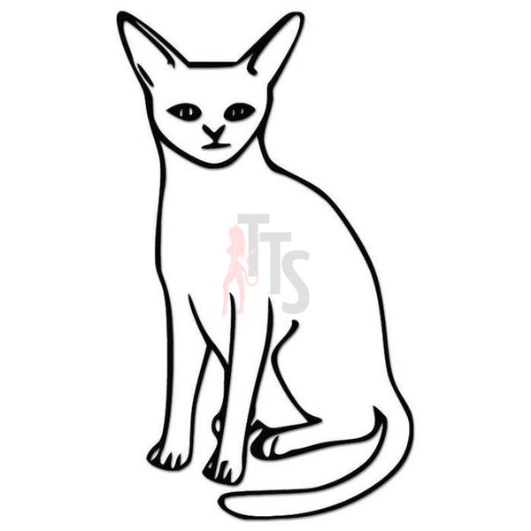 Abyssinian Cat Pet Decal Sticker