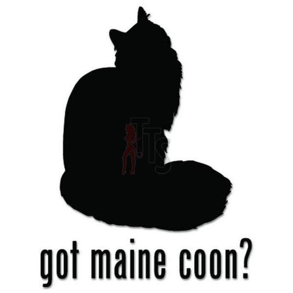 Got Maine Coon Cat Pet Decal Sticker