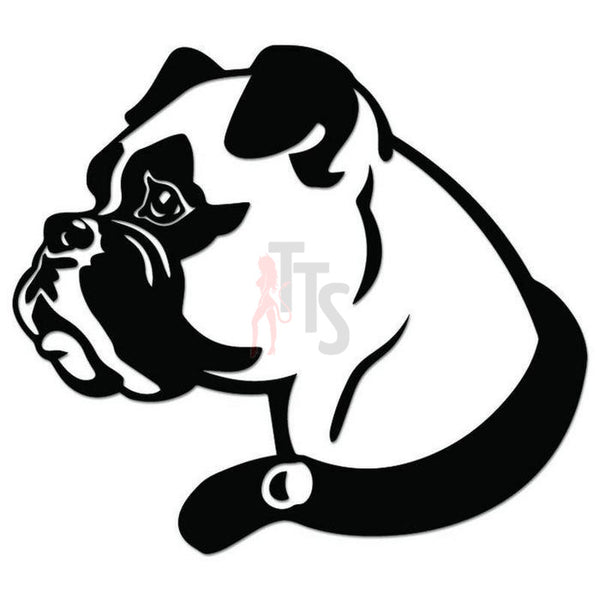 Boxer Dog Pet Decal Sticker