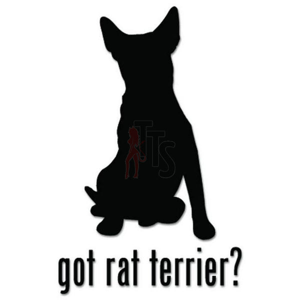 Got Rat Terrier Dog Pet Decal Sticker
