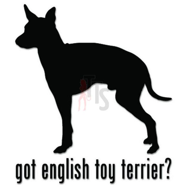Got English Toy Terrier Dog Pet Decal Sticker