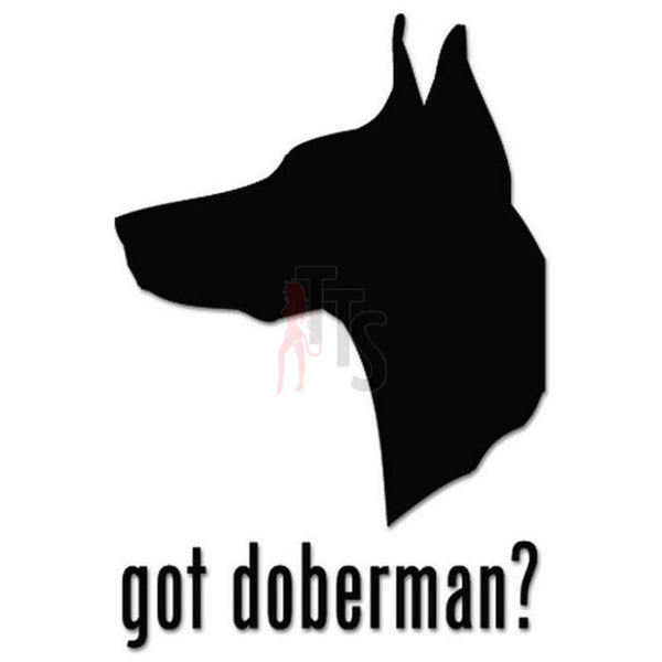 Got Doberman Pinscher Dog Pet Decal Sticker