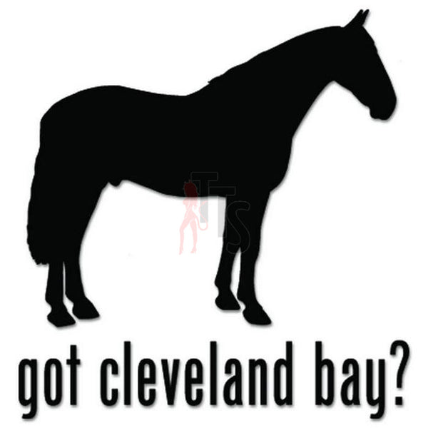 Got Cleveland Bay Horse Decal Sticker