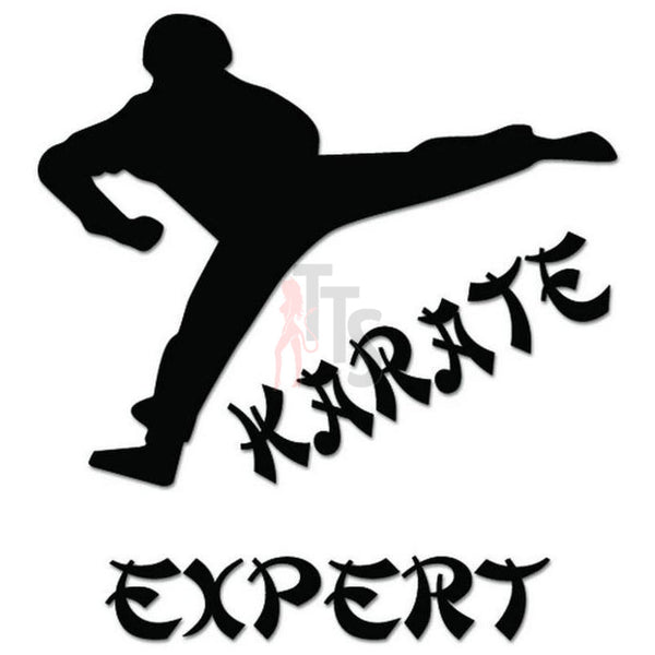 Karate Expert Martial Arts Decal Sticker
