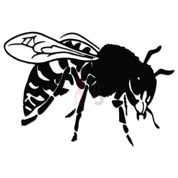Hornet Insect Decal Sticker