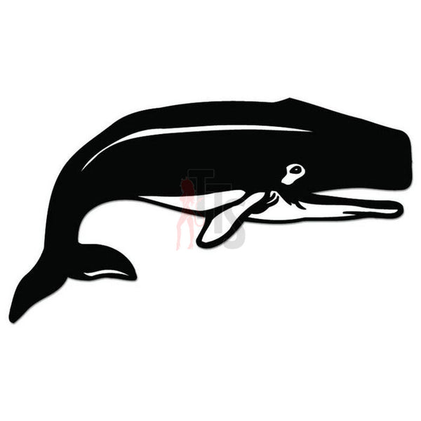 Whale Fish Decal Sticker Style 2