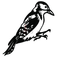 Woodpecker Bird Decal Sticker