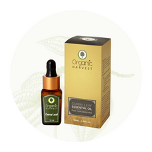 Organic Harvest Curry Leaf Essential Oil, 10ml.