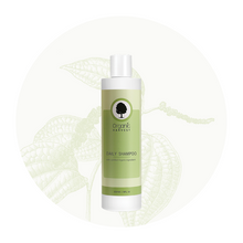 Organic Harvest Daily Shampoo, 225gm.