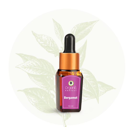 Organic Harvest Bergamot Essential Oil, 10ml.