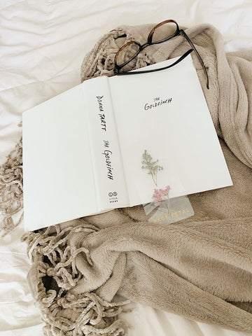 Goldfinch Book Quotes