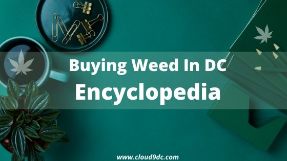 Buying Pot in DC Encyclopedia Banner