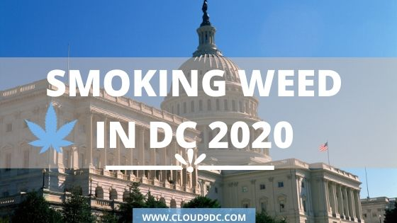 Smoking Weed in DC 2020