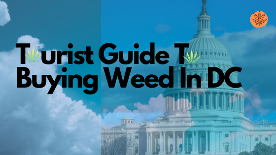 Where to Buy Weed in Washington DC