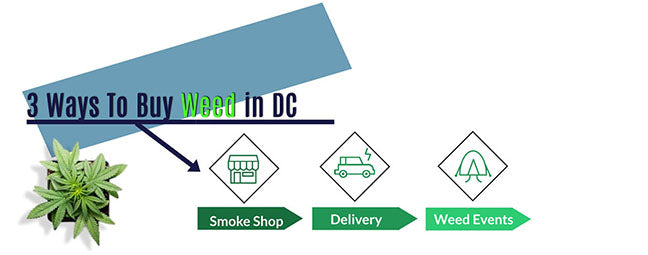 3 Ways to Buy Weed in DC