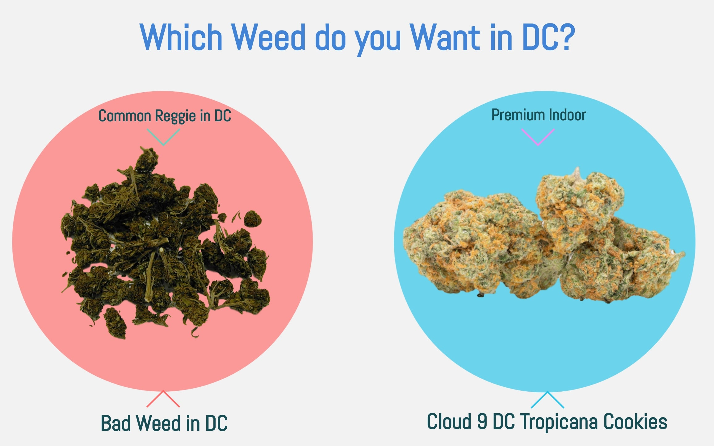 Good or bad weed in DC?