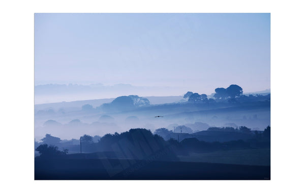 Misty morning in Cornwall - Abstract Wall Art