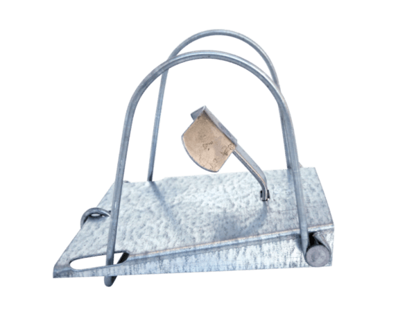Fenn Loop Mole Trap