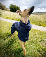 THE BLUE Lightweight Water-resistant Whippet Raincoat