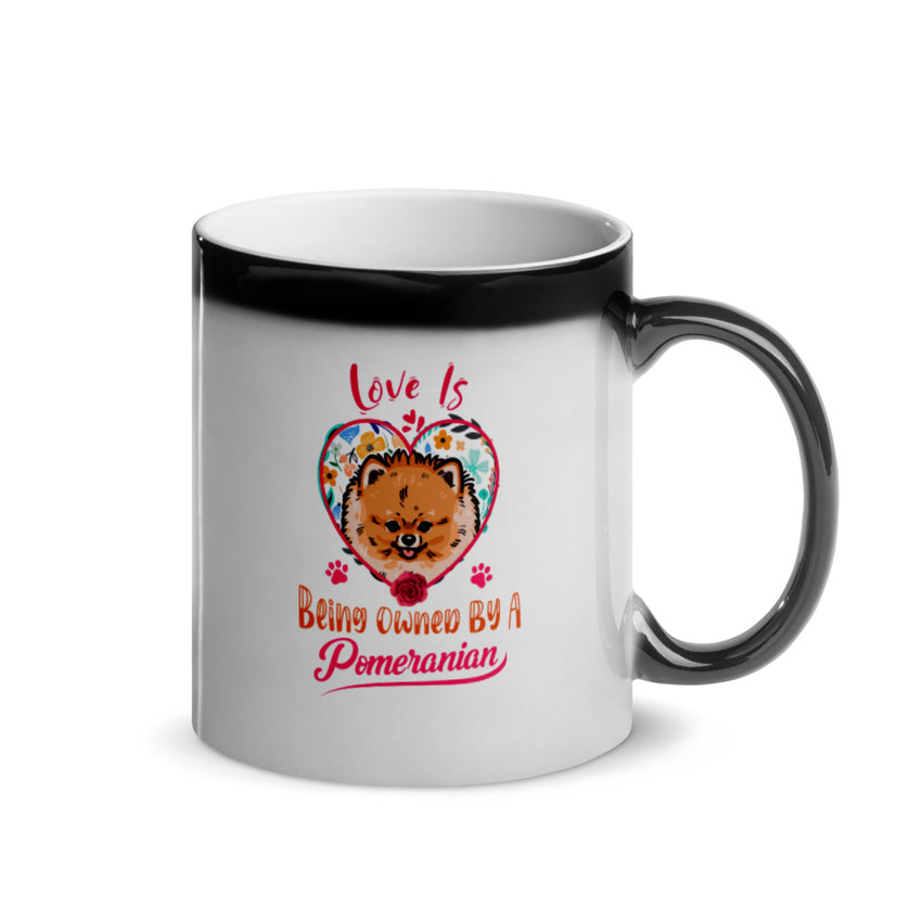 Love is Being Owned by a Pomeranian Glossy Magic Mug - PomWorld.Com