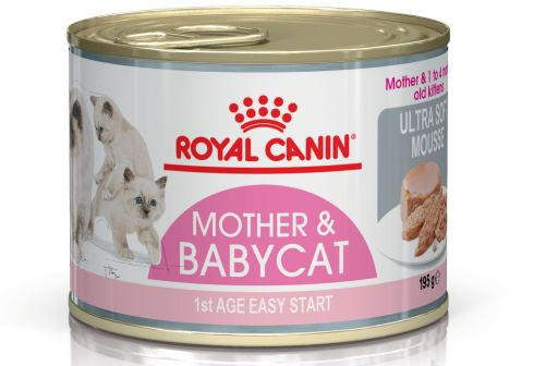 Royal Canin Mother & Babycat Ultra-Soft Mousse in Sauce Wet Cat Food 195g