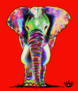 PRINT:  Classic Red  / Signature elephant