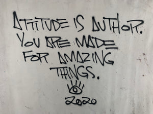 Attitude is author