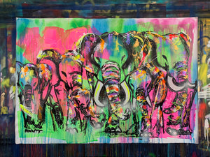 Tribe / elephant herd