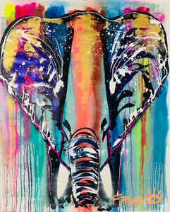 Rainbow showers elephant