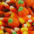 Zachary Autumn Mix 30lb Case-online-candy-store-5727