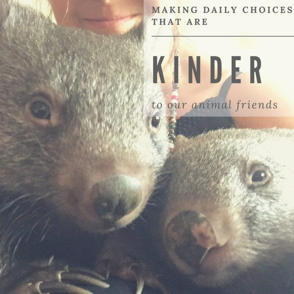 Making Daily Choices That Are Kinder To Our Animals