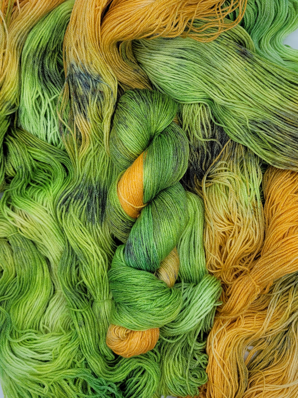 March Yarn of the Month: In Like a Lion