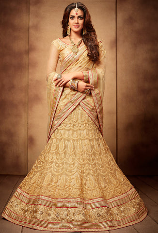 mermaid and fishtail Lehenga
