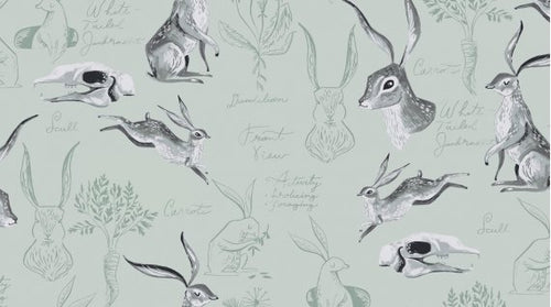 Image of Rabbit Study in Misty - Dear Stella - Rae Ritchie - Natural History