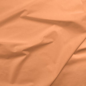 Image of Apricot - Paintbrush Studio - Painter's Palette Solids
